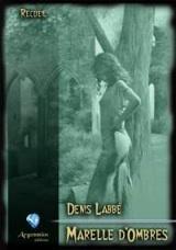 Labbé, Denis. Interview de l'auteur de Marelle d'Ombres